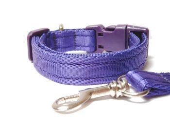 Plain Collar & Lead Set - Purple
