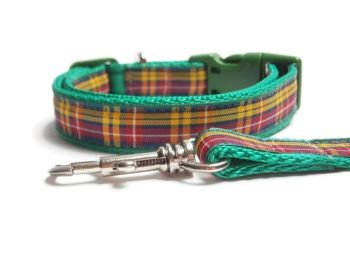 Buchanan Tartan Collar & Lead set - Green