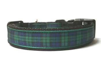 Blackwatch Tartan Collar - Black