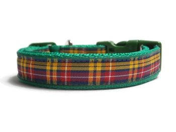 Buchanan Tartan Collar - Green