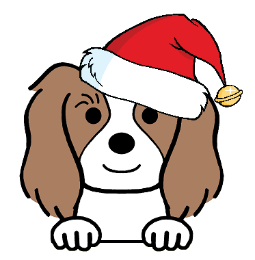 CHRISTMAS DOG PRODUCTS
