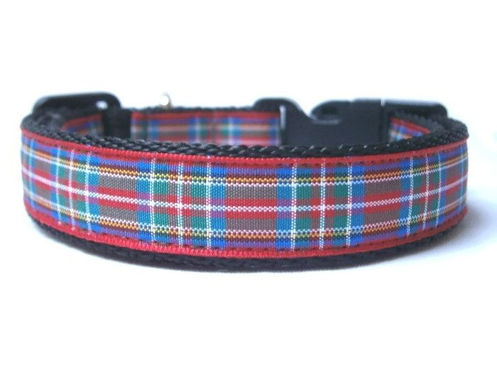 Royal Stewart Tartan Collar - Black