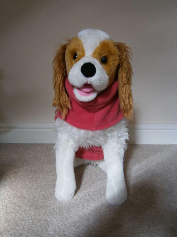 Fleece Dog Coat - with Name