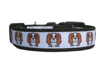 Custom Made - Cavalier King Charles Spaniel Collar