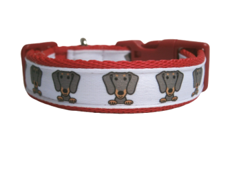Custom Made - Dachshund Collar
