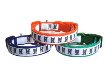 Boston Terrier Dog Collar