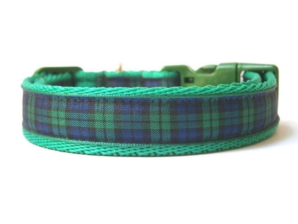 Blackwatch Tartan Collar - Green