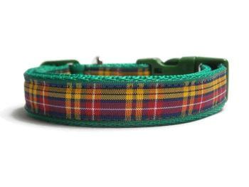 Buchanan Tartan Collar - Green