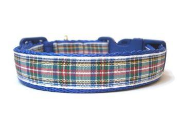 Dress Stewart Tartan Collar - Dark Blue