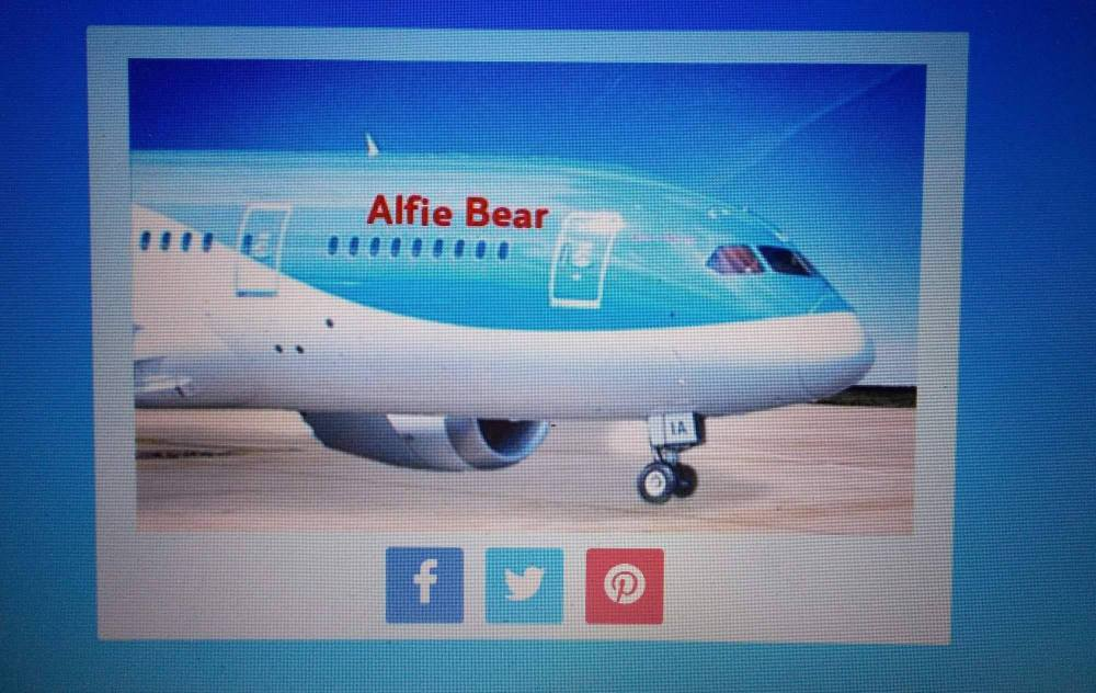 Alfie Bear Plane
