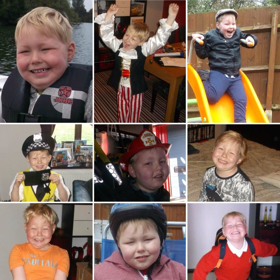 alfie collage