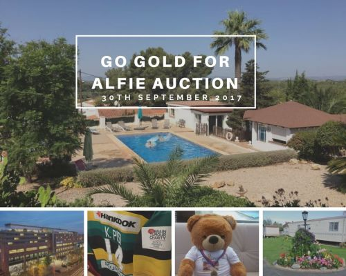 Go Gold Auction Lots