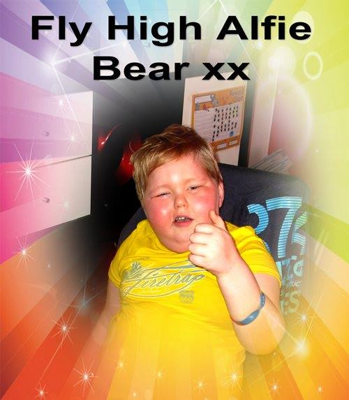 fly high alfie bear