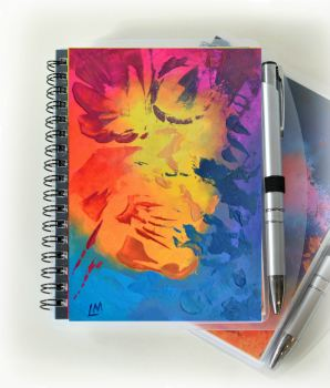 Eye Catcher Notebook and Silver Pen
