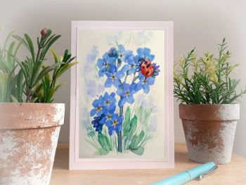 Ladybird and Forget me nots