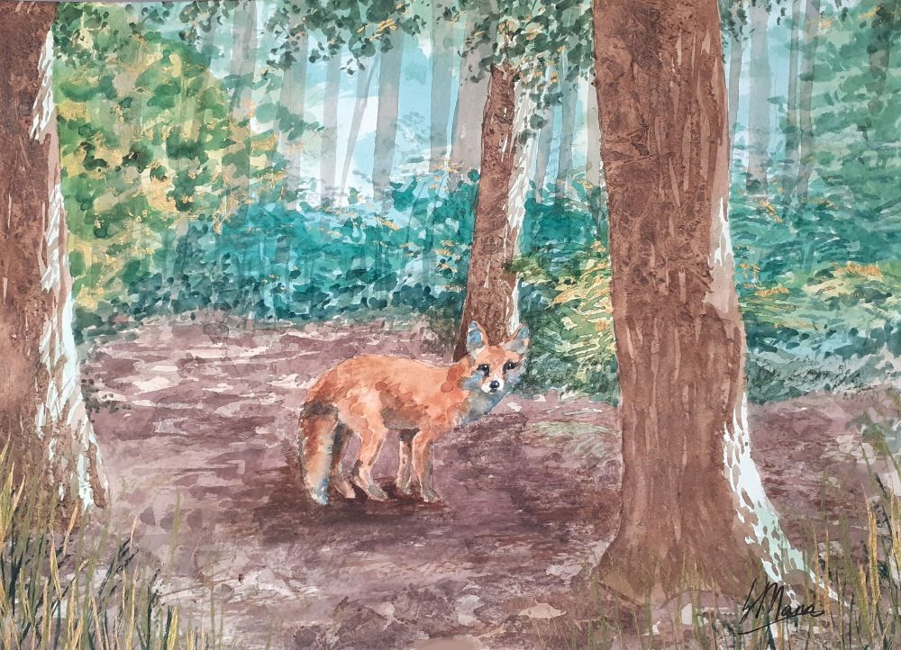 Fox in a Glade