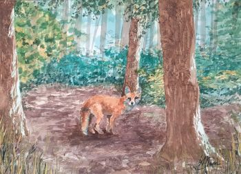 Fox in a Glade