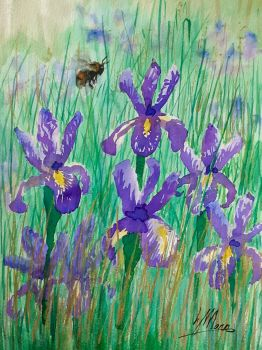 Bee and Purple Irises