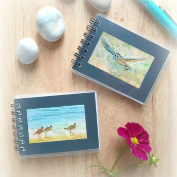 Two Mini Notebooks - Owl and Curlews