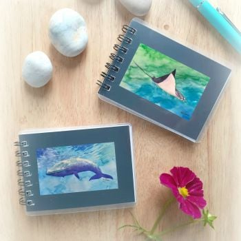 Two Mini Notebooks - Blue Whale and Manta Ray