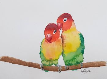 Love Birds Original Watercolour
