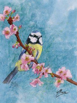 Blue Tit and Blossom Original Watercolour