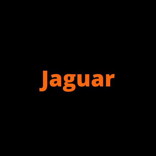 Jaguar Turbocharger