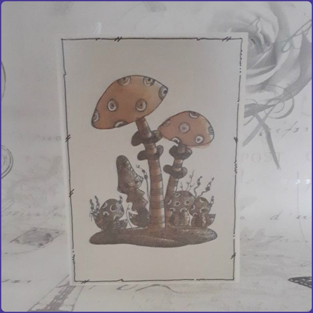 Set Of Notecards Notelets Greetings Cards Mushrooms Toadstools