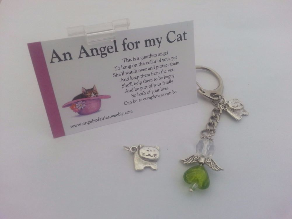 An angel for my cat