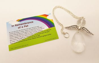 Angels Tear Remembrance Gift - Pet