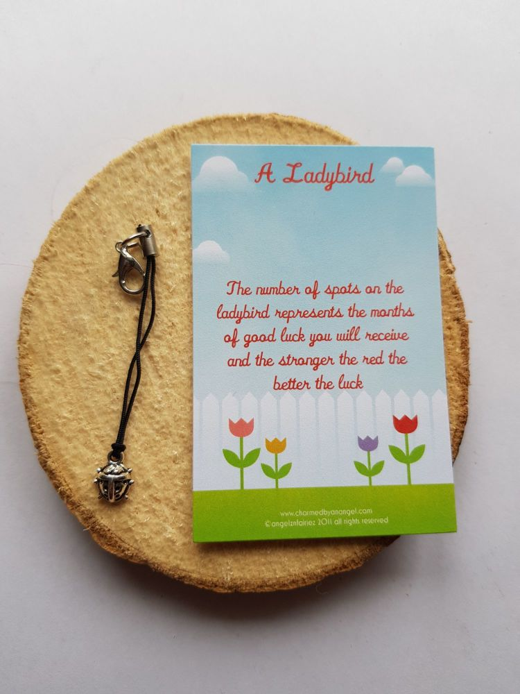 A Ladybird Clippy Lucky Charm