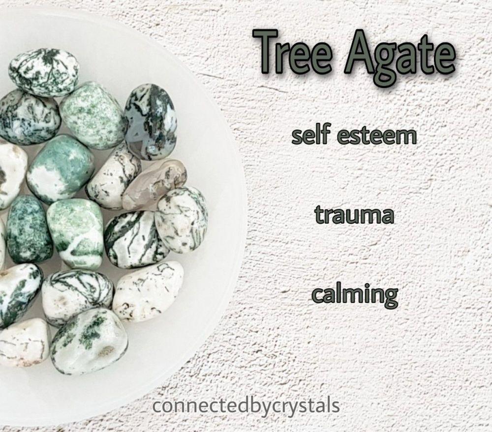 Tree Agate - Self Esteem