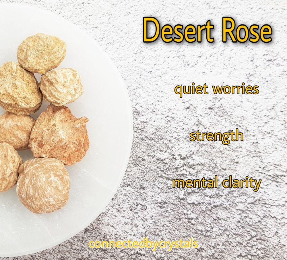 Desert Rose - Hardship