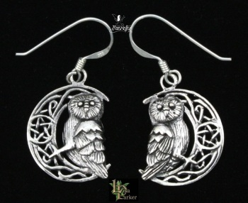 Owl on Moon Earrings by Lisa Parker