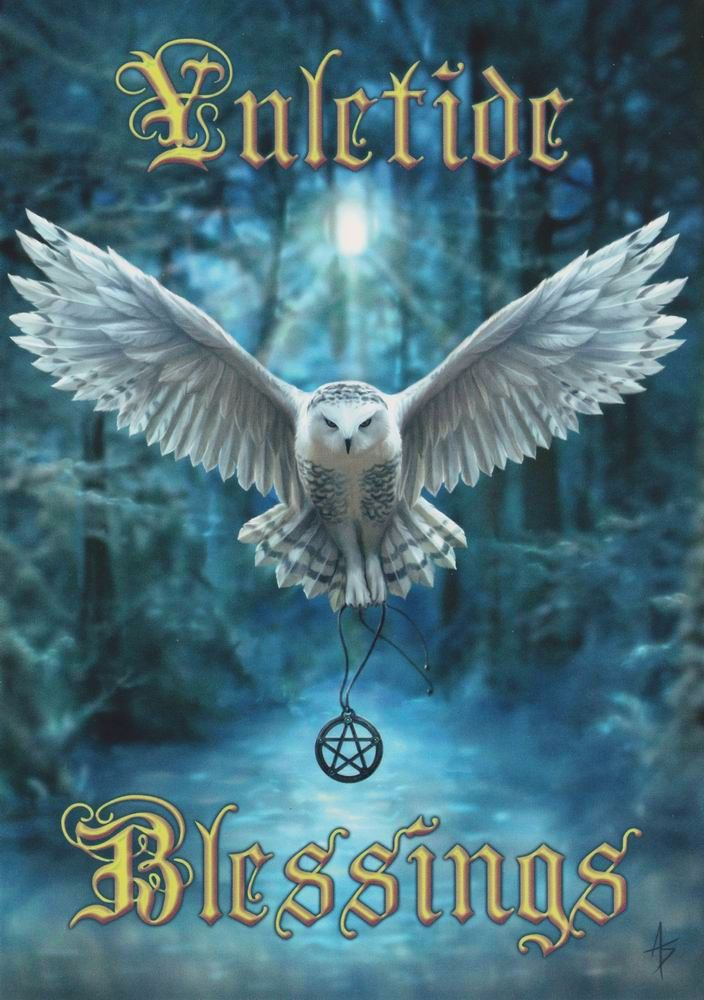 Awake Your Magic owl Greetings Card by Anne Stokes