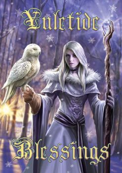 Winter Owl Greetings Card by Anne Stokes