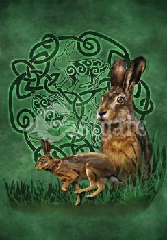 Celtic Hare Greetings card by Brigid Ashwood