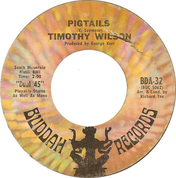 TIMOTHY WILSON - PIGTAILS