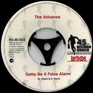 THE VOLCANOS - GOTTA BE A FALSE ALARM