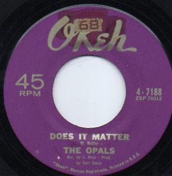 THE OPALS - DOES IT MATTER