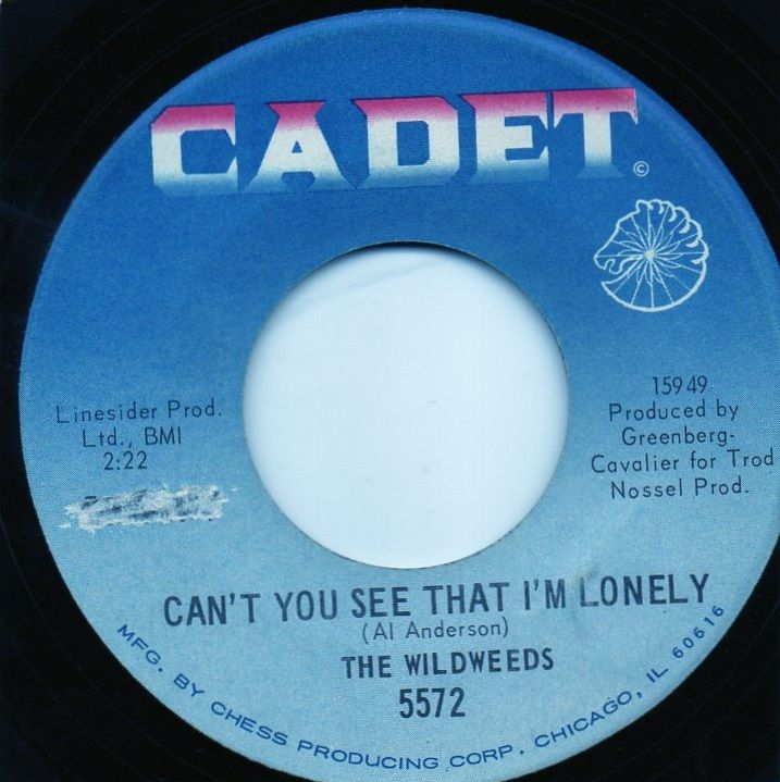 THE WILDWEEDS - CAN'T YOU SEE THAT I'M LONELY