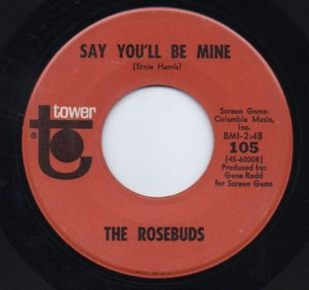 THE ROSEBUDS - SAY YOU'LL BE MINE