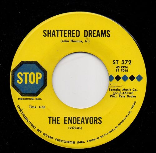 THE ENDEAVORS - I KNOW YOU DIDN'T WANT ME