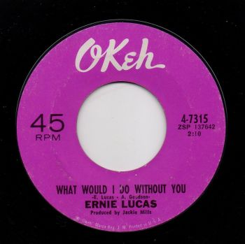 ERNIE LUCAS - WHAT WOULD I DO WITHOUT YOU