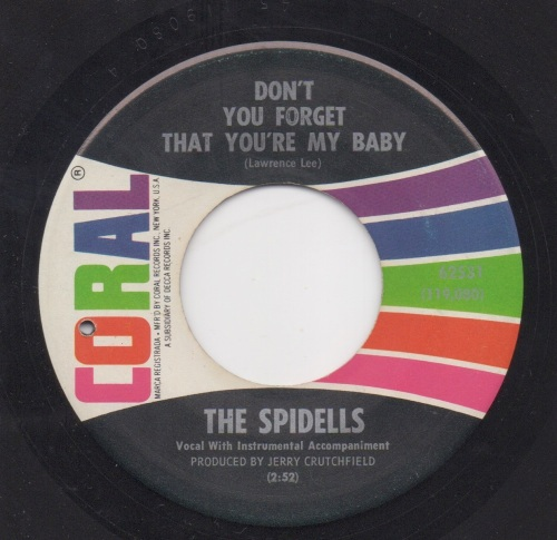 THE SPIDELLS - DON'T YOU FORGET THAT YOU'RE MY BABY