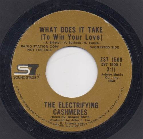 ELECTRIFYING CASHMERES - WHAT DOES IT TAKE (TO WIN YOUR LOVE)