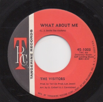 VISITORS - WHAT ABOUT ME