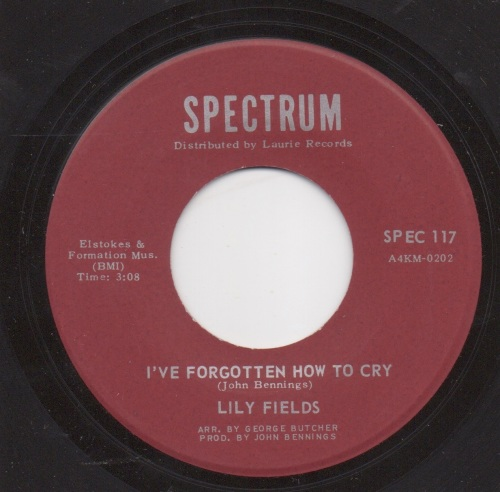 LILY FIELDS - I'VE FORGOTTEN HOW TO CRY