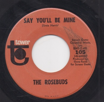 ROSEBUDS - SAY YOU'LL BE MINE