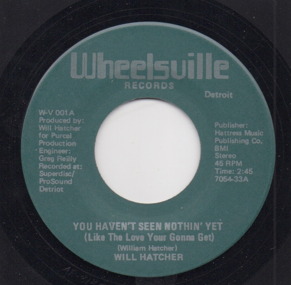 WILL HATCHER - YOU HAVEN'T SEEN NOTHIN' YET (LIKE THE LOVE YOUR GONNA GET)